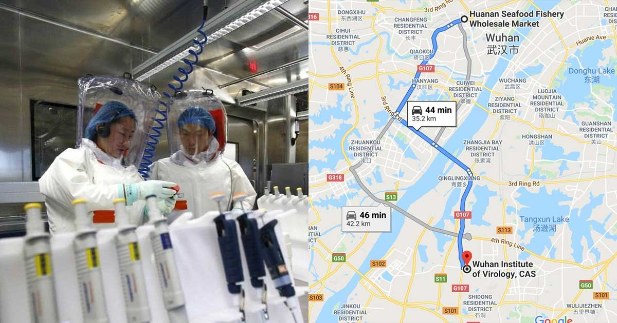 2 panel 1.jpg?resize=412,275 - China Lab in Wuhan Suspected to be Source of SARS-like Virus Outbreak