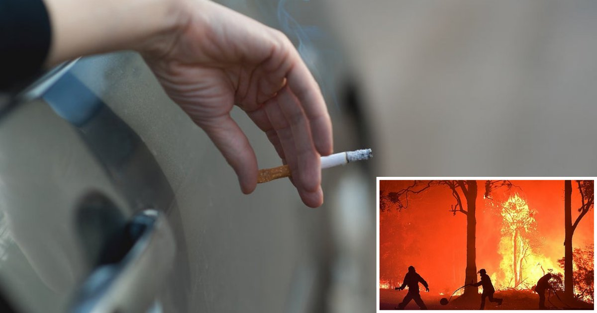 5 48.png?resize=1200,630 - You Could Be Fined With $11,000 If You Are Caught Throwing Cigarette Butts Out of Your Car Window