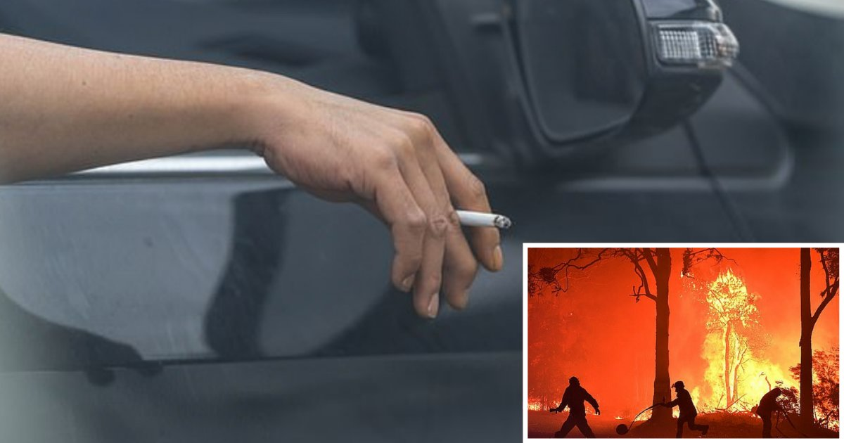 6 38.png?resize=1200,630 - Drivers Throwing Cigarette Butts Out of The Car's Window Might Have to Pay a Fine of $11,000