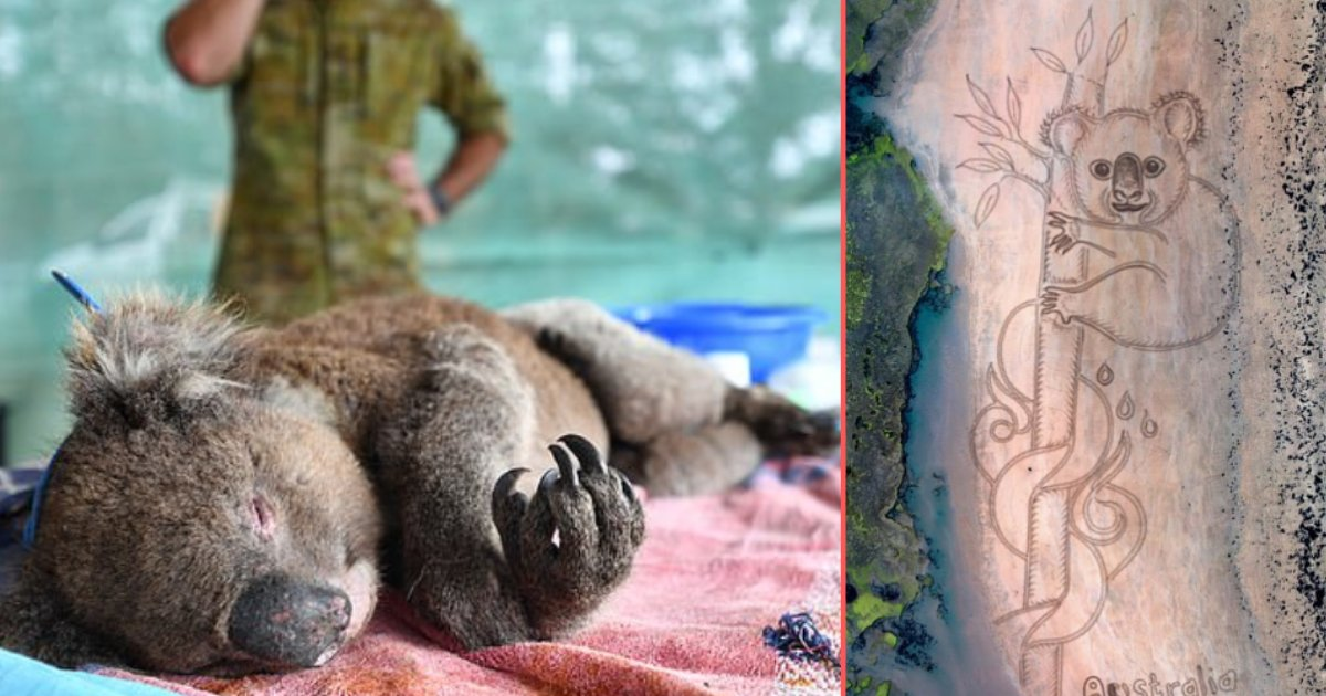 6 42.png?resize=1200,630 - Artist Honors Animals Who Died in The Bushfire By Drawing Murals in The Sand