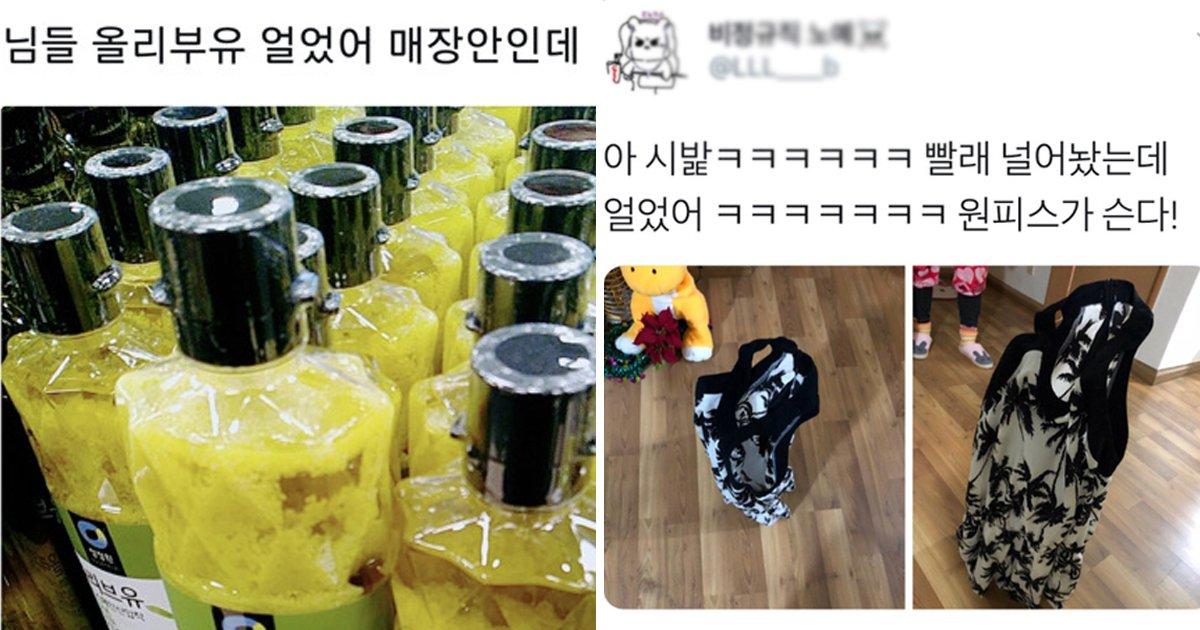 "6 65.jpg?resize=412,275 - ""올 겨울이 따뜻한 거임""... 2년전 시베리아였던 '서울' 모음, TOP 14"