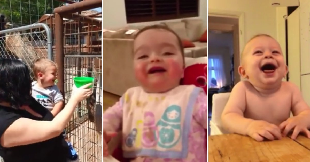 9 10.png?resize=1200,630 - Adorable Compilation of Babies Laughing To Make Your Day