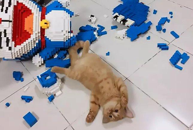 asiawire e1578015128529.png?resize=412,275 - Un chat détruit une sculpture faite de 2432 pièces de Légo que son propriétaire avait créé en 7 jours