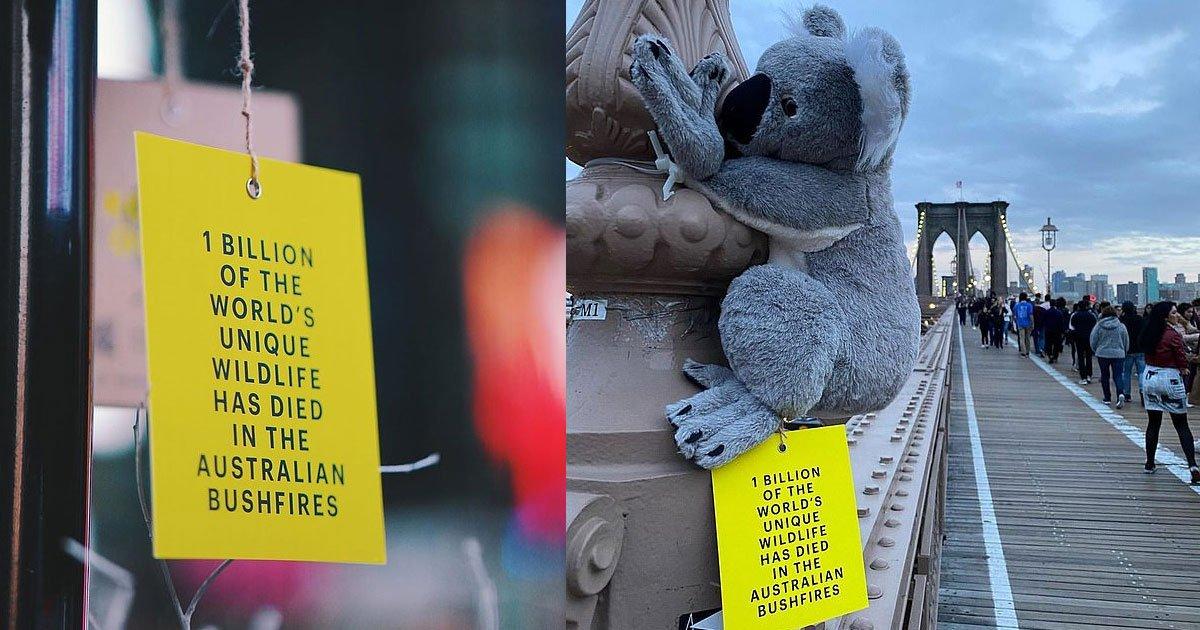 australian media agency attached stuffed koalas to lamp posts and poles to raise awareness of the bushfire crisis.jpg?resize=1200,630 - Stuffed Koalas Were Placed Around NYC To Raise Awareness Of The Bushfire Crisis