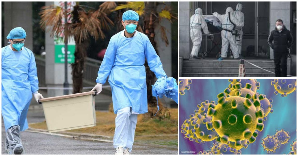 collage 184.png?resize=412,275 - Australian Man Quarantined After Showing Signs of SARS-like Virus From China