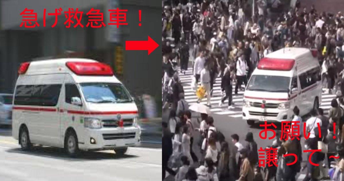 e696b0e8a68fe38397e383ade382b8e382a7e382afe38388 26.png?resize=1200,630 - 交差点で救急車に協力しない日本?車も歩行者も?