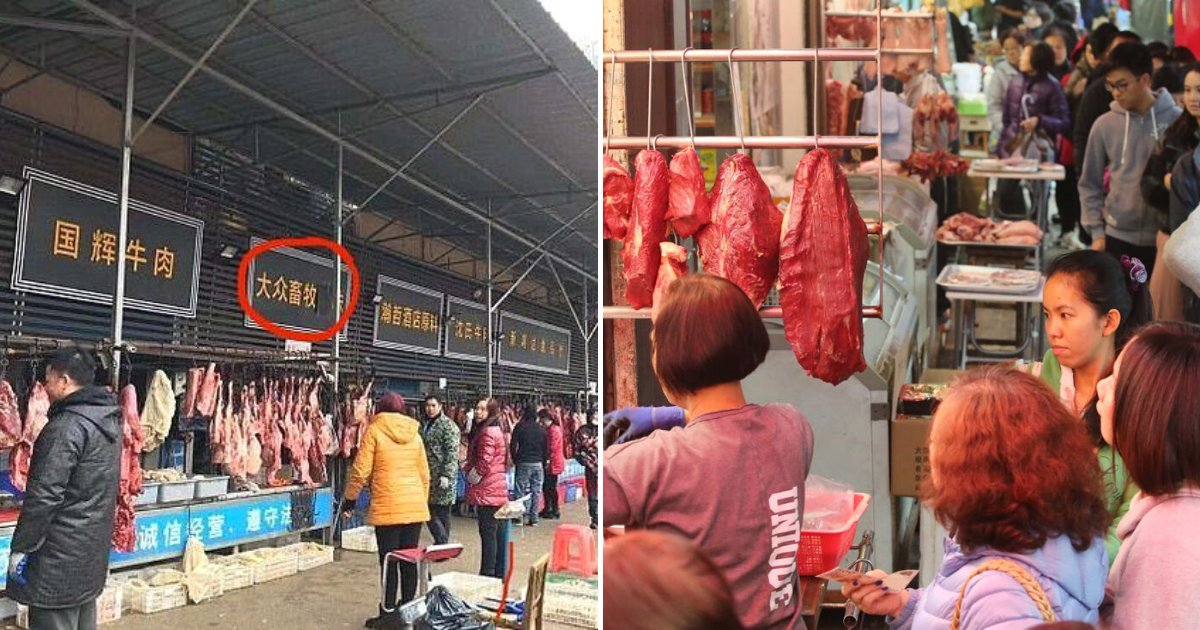 market6.png?resize=1200,630 - Chinese Food Market At The Center Of Coronavirus Was Selling Koalas, Snakes And Wolves For Locals To Eat