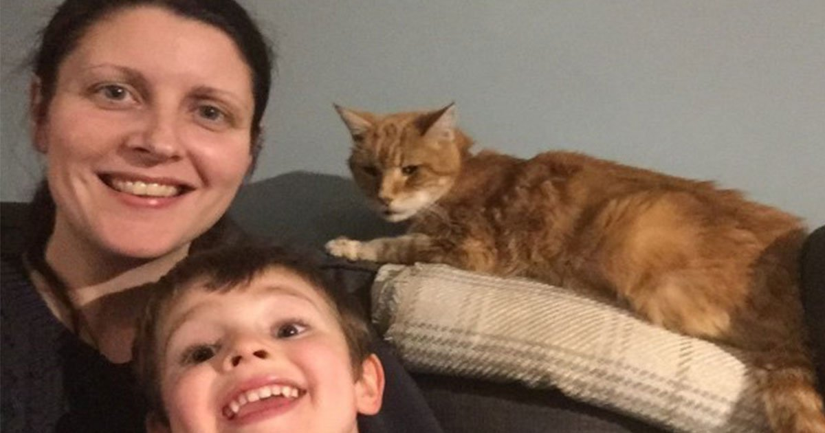 missing cat reunited with family on new years eve after two years.jpg?resize=412,232 - Missing Cat Reunited With Family On NYE After Two Years