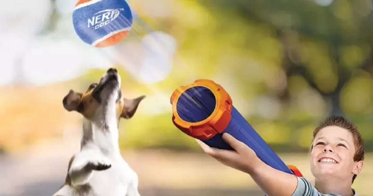 n3.jpg?resize=1200,630 - Nerf Dog Tennis Ball Launcher Allows Owners To Play Fetch With Their Dogs With Little Effort