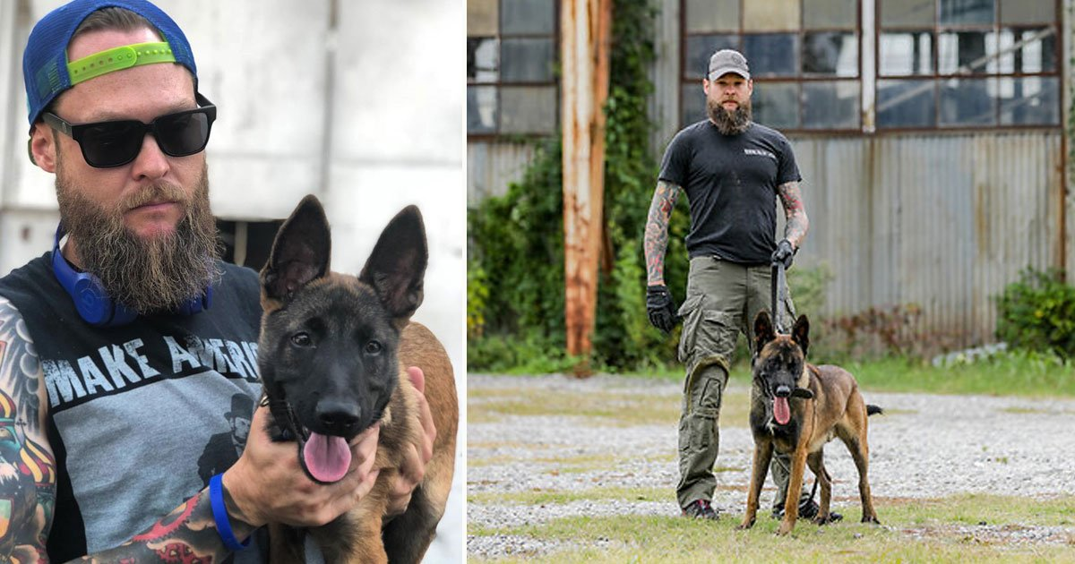 torchlight k 9.jpg?resize=1200,630 - Torchlight K-9 Trains The World's Toughest Dogs For The US Police Force