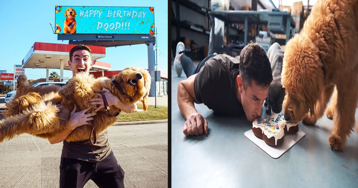 untitled 1 140.jpg?resize=1200,630 - A Man Rented A Whole Billboard To Let People Know It's His Dog's Birthday