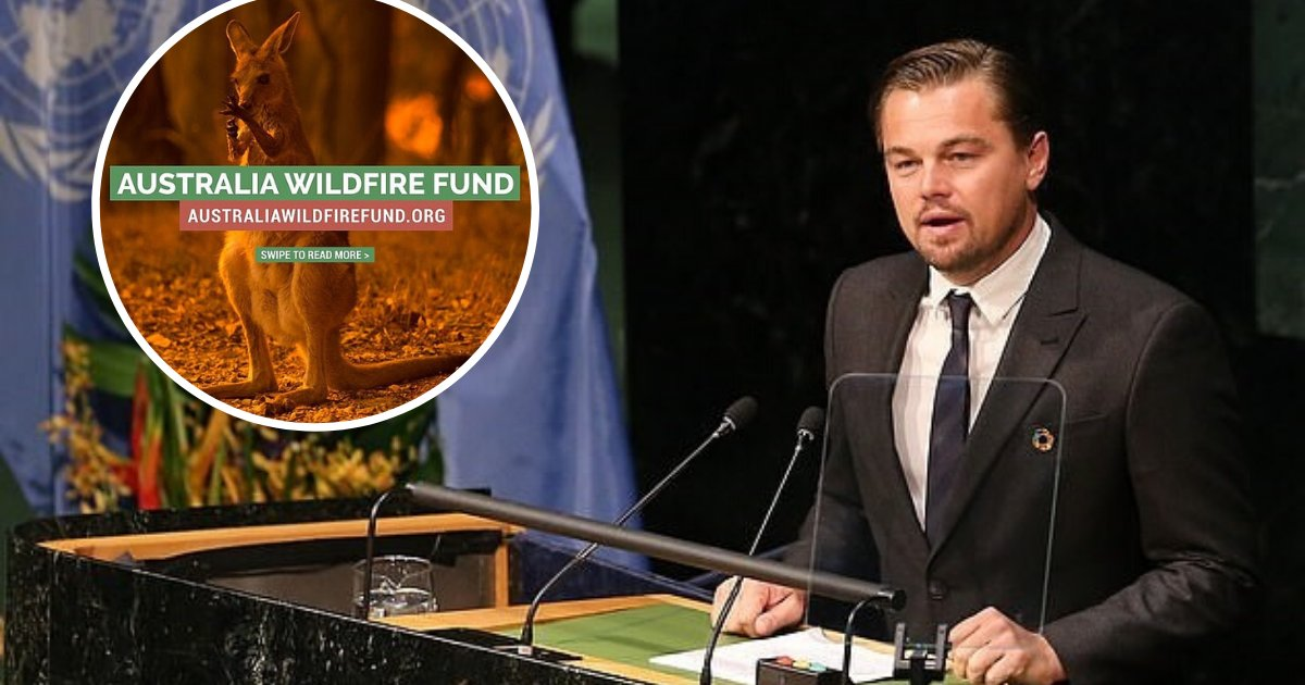 untitled design 18.png?resize=1200,630 - Leonardo DiCaprio's Foundation Launched A $3 Million Fund For Bushfire Crisis Relief
