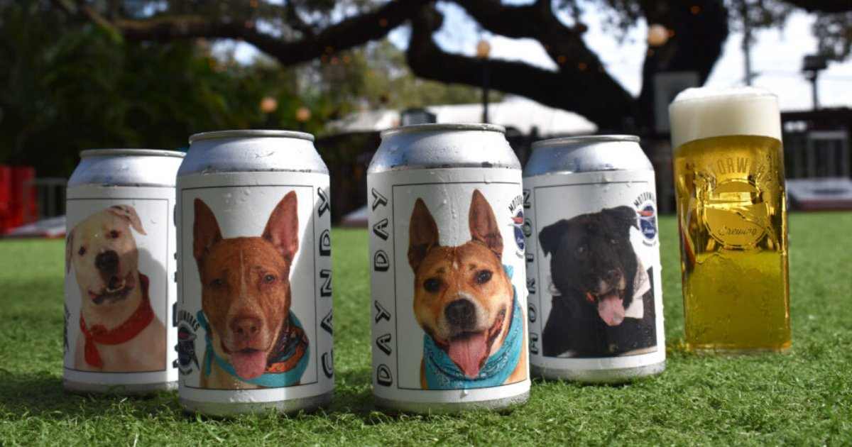 untitled design 49 2.png?resize=1200,630 - Brewery Posting Pictures Of Shelter Dogs On Beer Cans To Help Them Get Adopted