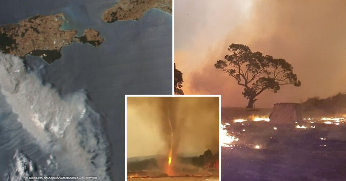 untitled design 61.png?resize=1200,630 - Two Died As 'Unstoppable' Bushfire Devastated Half Of The Popular Kangaroo Island