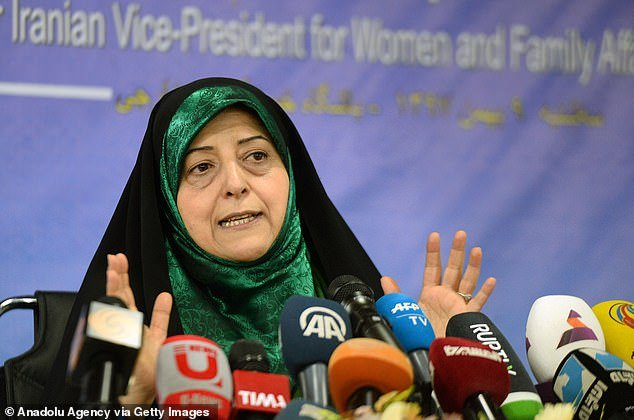Iranian Vice President for Women and Family Affairs Masoumeh Ebtekar makes a speech in Tehran last January