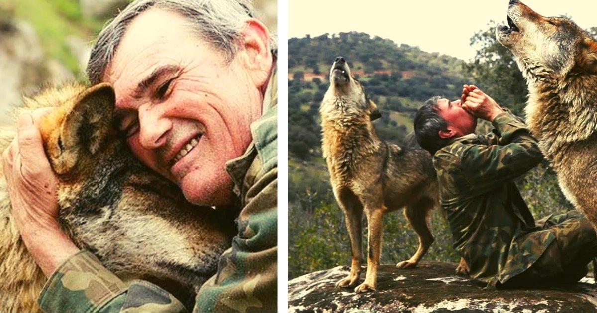 1lobosmarcos.png?resize=1200,630 - Sus Padres Lo Venden Y El Niño Escapa Al Bosque Para Ser Criado Por Una Manada De Lobos Salvajes