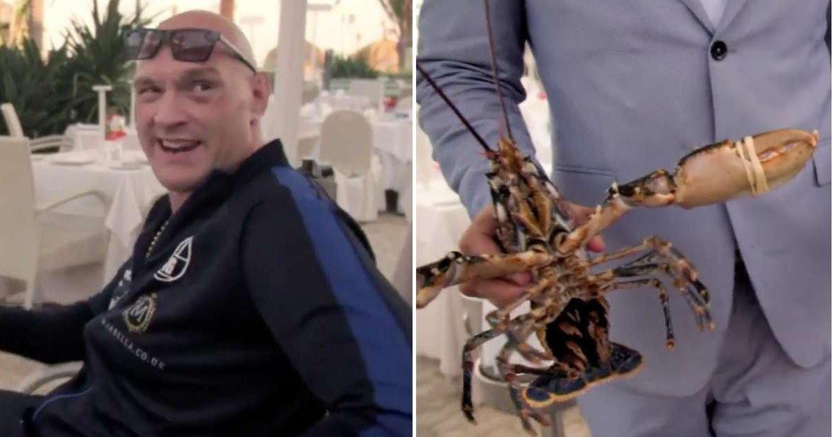 5 66.jpg?resize=412,232 - Tyson Fury a payé 194 € pour remettre deux homards dans la mer