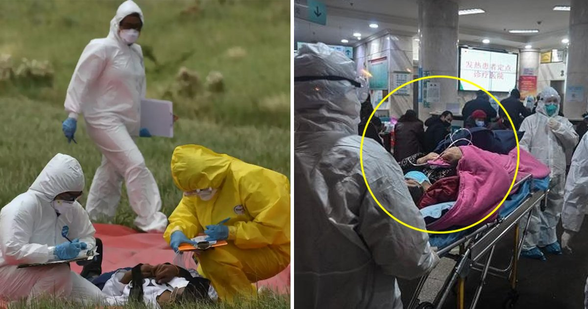adffasdf.jpg?resize=412,232 - Coronavirus Latest: China Removes Top Hubei Health Officials As Death Toll Exceeds 1,000