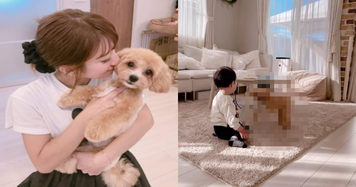 e696b0e8a68fe38397e383ade382b8e382a7e382afe38388 5 5.jpg?resize=1200,630 - 辻希美、ブログに登場した変わり果てた愛犬の姿...「大事にされてない」「別の犬に…」