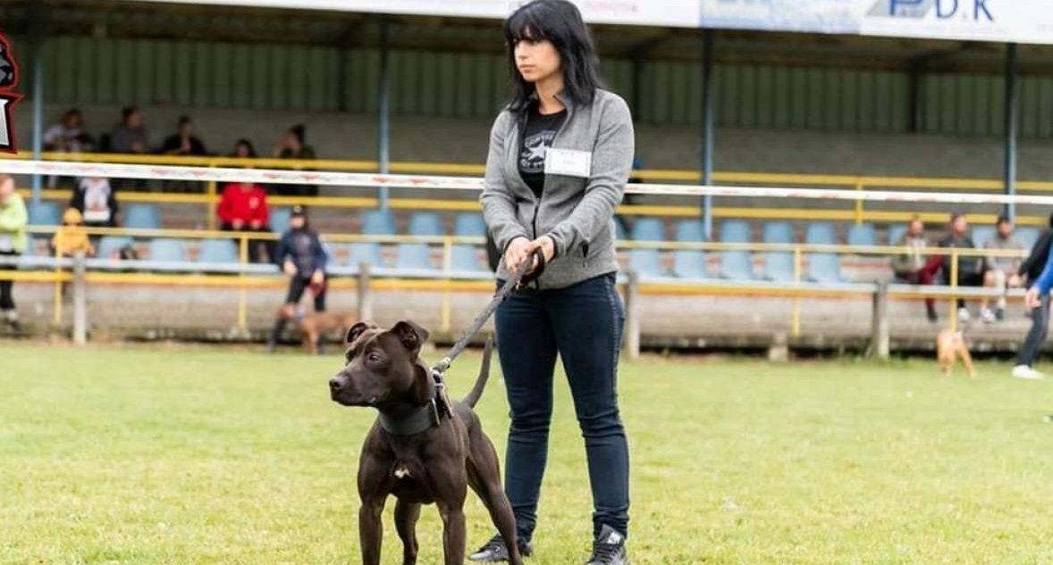 ep.jpg?resize=412,232 - Affaire Elisa Pilarski: les 67 chiens vont être soumis à des analyses ADN