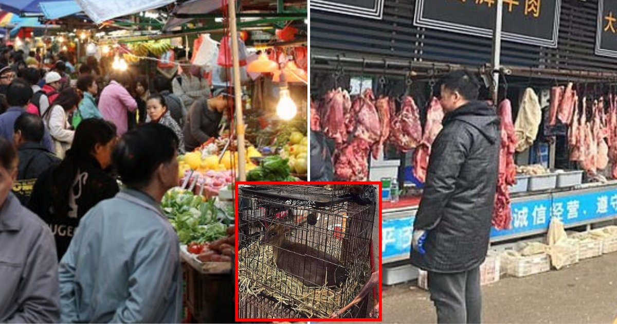 market6.png?resize=1200,630 - Market Vendors Around China Arrested For Secretly Selling Live Wild Animals Even After The Trade Was Banned