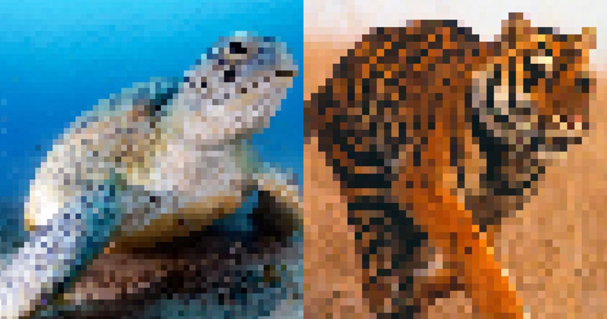near extinct.png?resize=412,232 - 20+ Pictures Of Animals Showing How Many Of Them Are Left In The World With Numbers Of Pixels