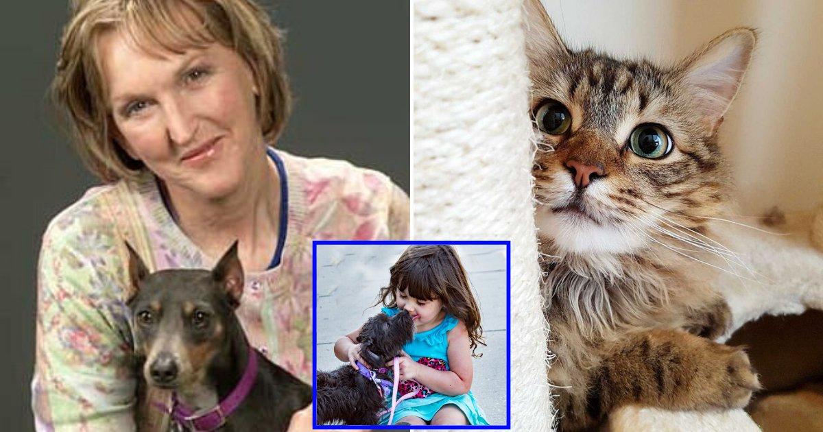 peta7.png?resize=1200,630 - 'They Are Not Your Cheap Burglar Alarm!' PETA Chief Calls The Term 'Pets' Derogatory To Animals
