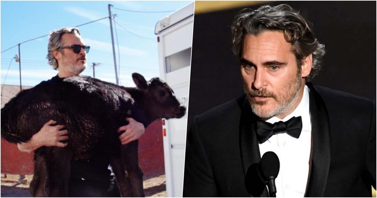 thumbnail 20.jpg?resize=1200,630 - Actor Joaquin Phoenix Saved A Calf And Its Mother From A Slaughterhouse A Few Days After His Oscar Speech