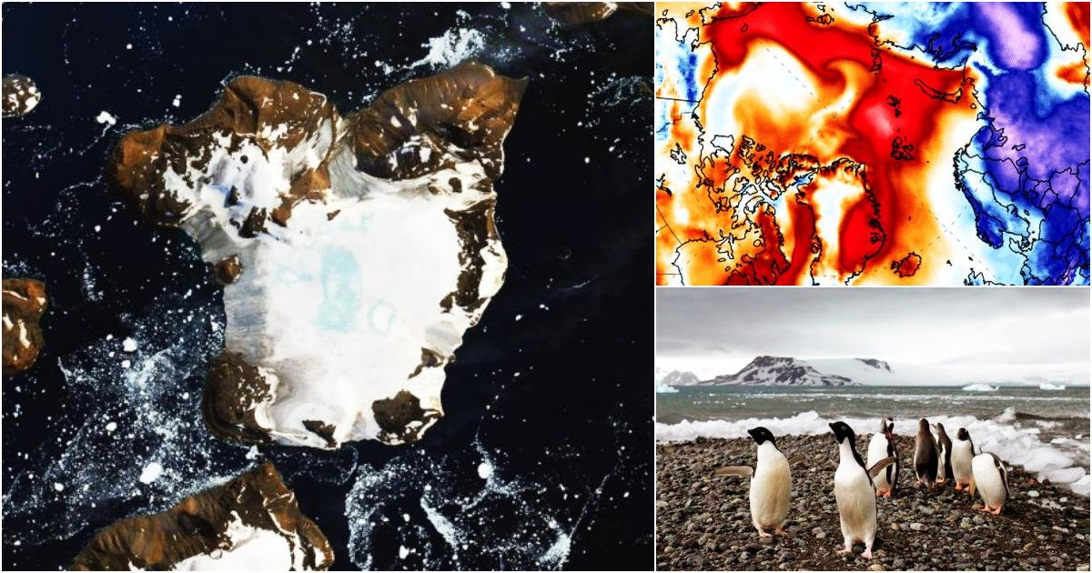 thumbnail 29.jpg?resize=412,232 - NASA Satellite Images Reveal The Effects Of Heatwave In Antarctica Melting 20% Of Snow In 9 Days