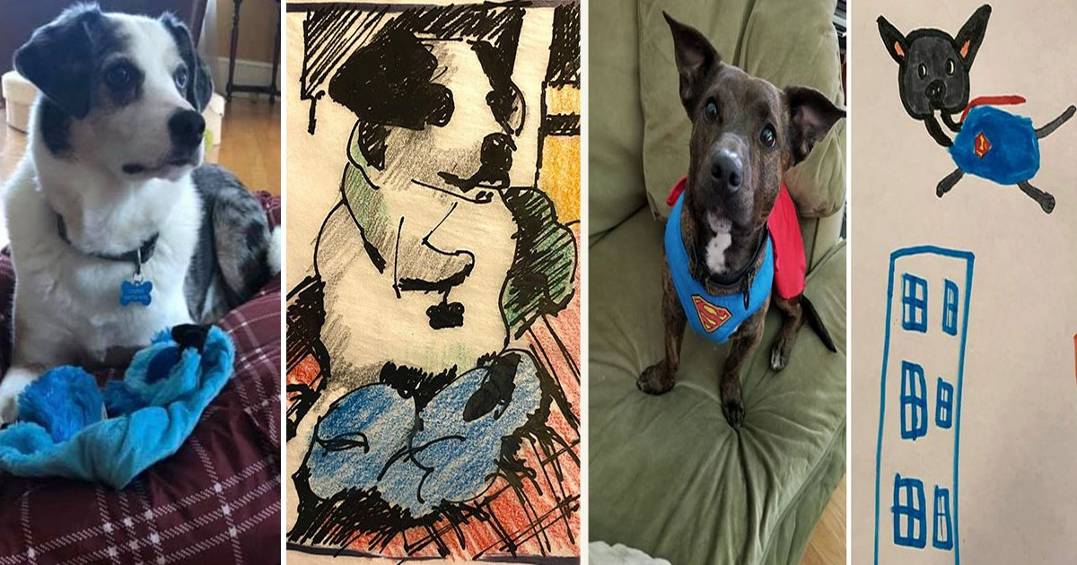 untitled 1 110.jpg?resize=412,232 - Humane Society Promised To Turn Pets Into 'Timeless' Works Of Art For A $15 Donation