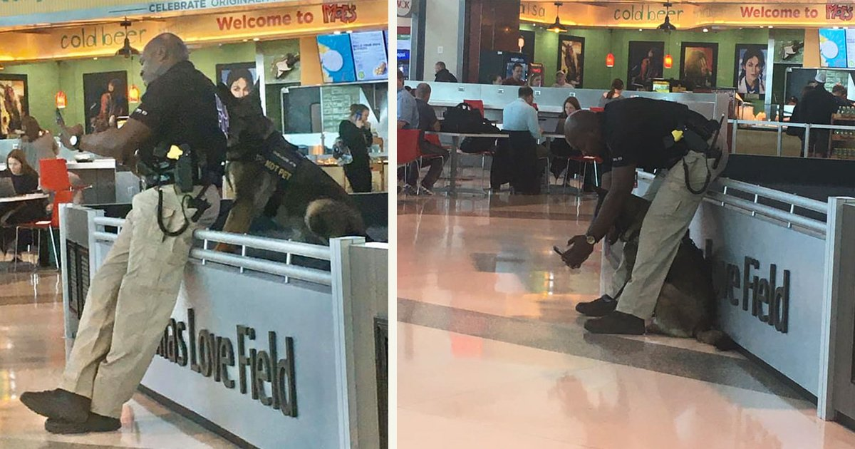 untitled 1 78.jpg?resize=412,232 - A Woman Captured A Policeman Taking Selfies With His Service Dog