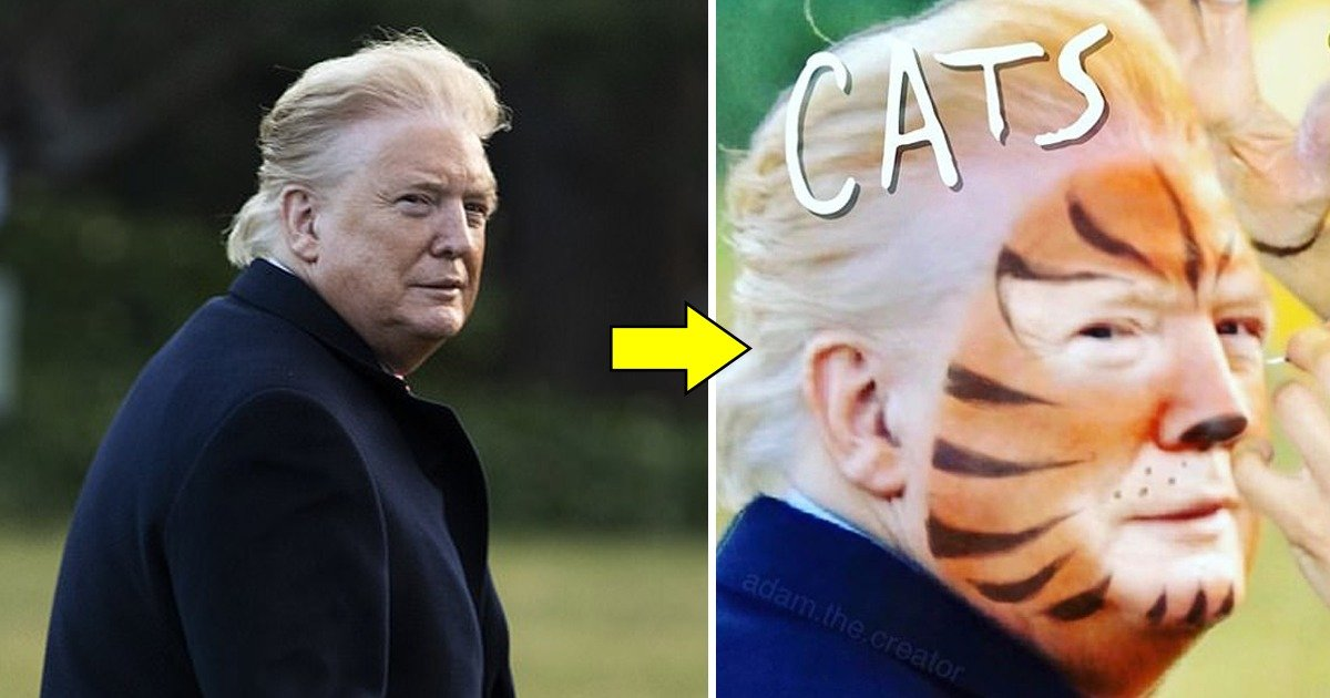 whatsapp image 2020 02 09 at 10 27 44 pm.jpeg?resize=412,232 - Humorous Memes About Trump's Fake Tan Lines Some Calling Him A Character From Cats While Others Saying He Used Cheetos As Makeup