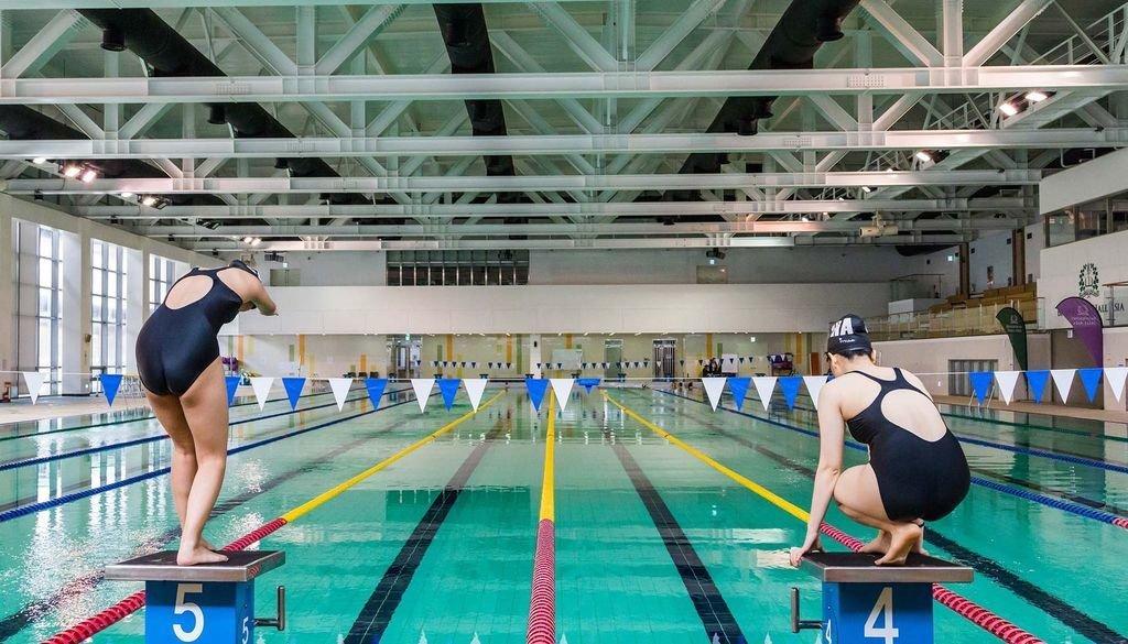 제주 여자 국제학교 브랭섬홀 아시아, 미국 오픈워터 수영 국가대표 ...