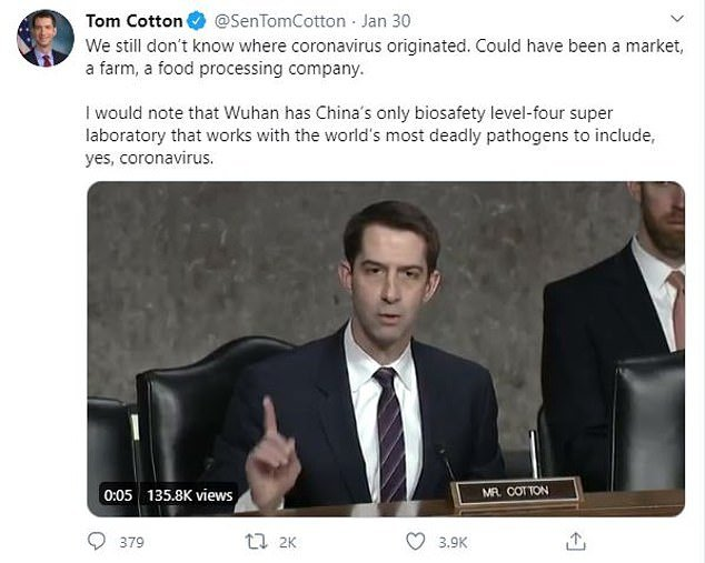 In January, a United States Republican senator from Arkansas, Tom Cotton, suggested China deliberately created coronavirus