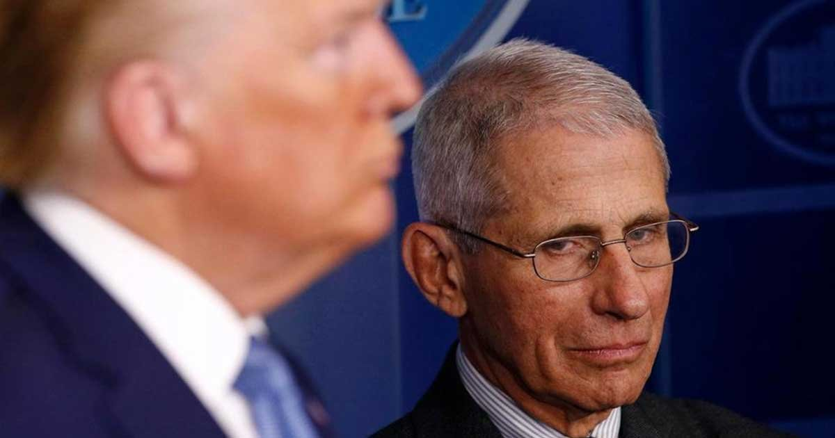 ap 41.jpg?resize=1200,630 - Fauci Politely Spar With Trump Over Untested COVID-19 Drug Treatment