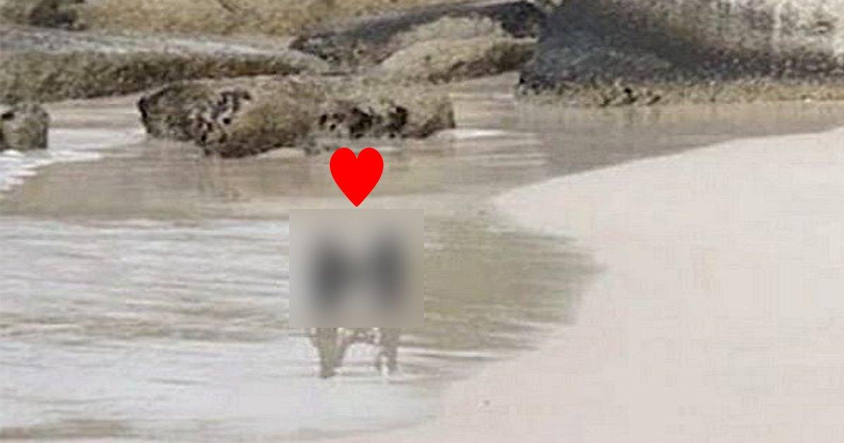 ed8eadeab784 1.jpg?resize=412,275 - '내가 뭘 본거지..? '... 해변에서 꽁냥꽁냥 데이트 하는 커플 한 쌍