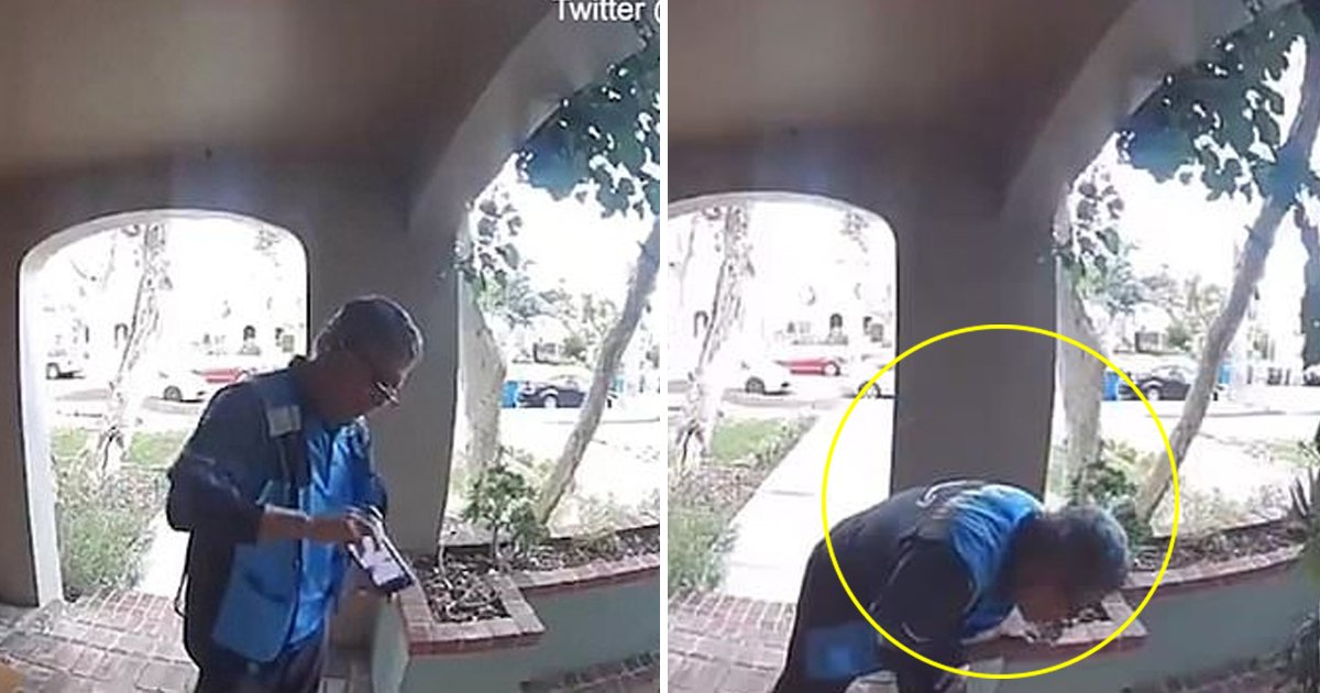gdgdddd.jpg?resize=412,232 - Amazon Delivery Man Spits On The Package Delivering To A House In Los Angles