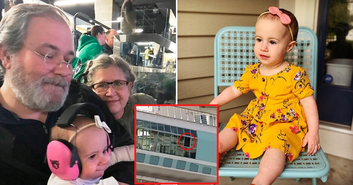 ship7.png?resize=412,232 - Grandfather Who Accidentally Dropped Toddler From Cruise Ship Window Pleaded Guilty To Negligent Homicide
