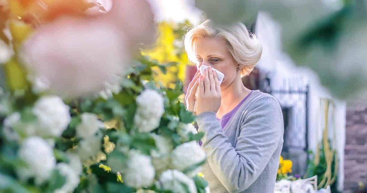 treatment planner for hay fever web e1585174757586.jpg?resize=1200,630 - Symptômes d'une allergie ou du coronavirus ? Voici comment faire la différence entre les 2 !