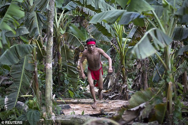 The teenager, who belongs to the Yanomami community scattered along the Brazilian-Venezuelan border, is in intensive care with Covid-19 symptoms. Pictured: A Yanomami tribesman in 2012
