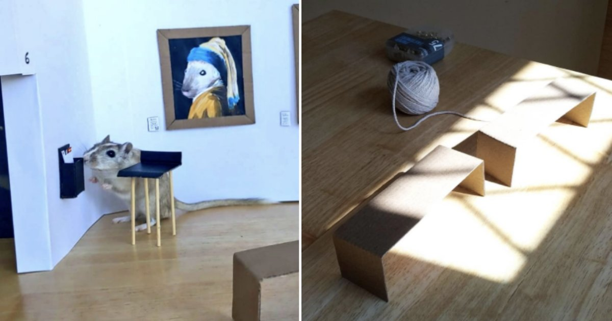 5 30.png?resize=1200,630 - This Couple Created a Beautiful Tiny Art Gallery For Their Gerbils