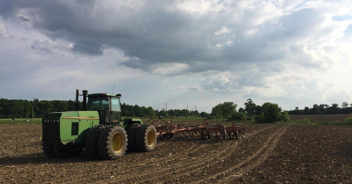 champ.jpg?resize=412,232 - Vidéo: Un agriculteur rend hommage aux soignants depuis ses champs