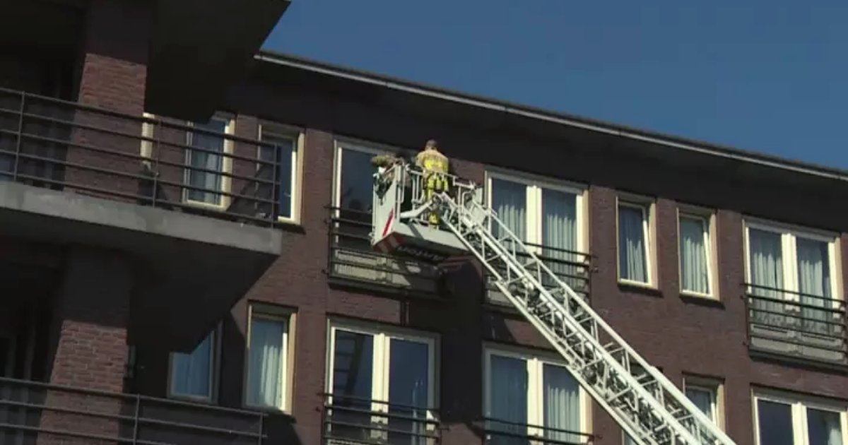 family5.png?resize=412,232 - Firefighters Lifted Family To Fourth Floor Window So Dying Grandfather Can Say Goodbye And See Them One Last Time