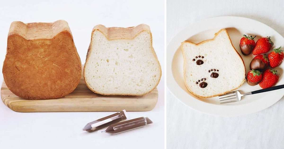 h.png?resize=412,232 - A Bakery Introduced Cat-Shaped Bread – And It Is Absolutely Lovable
