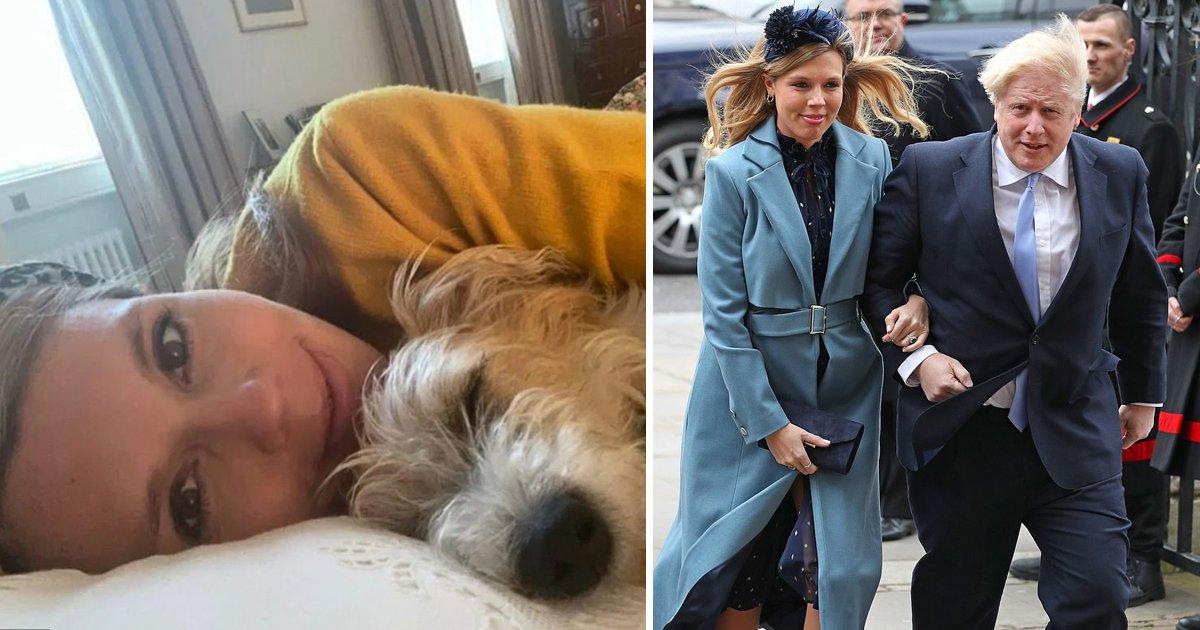 hhaaaaa.jpg?resize=1200,630 - Boris Johnson's Pregnant Girlfriend Carrie Symonds Has 'Coronavirus Symptoms'