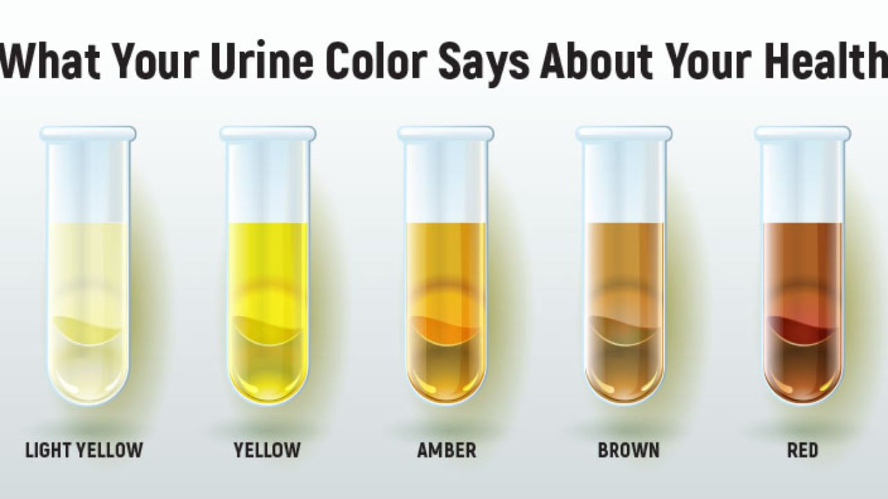 Healthy urine color differences