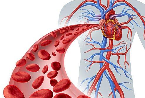 poor blood circulation symptoms