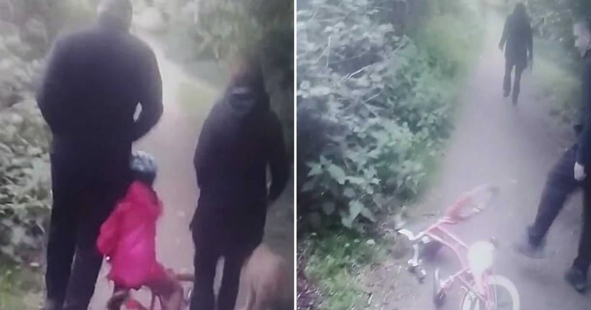 3 30.png?resize=1200,630 - 6 Year Old Girl Falls Down From Her Bike After Dogwalking Couple Refuse To Give Her Way