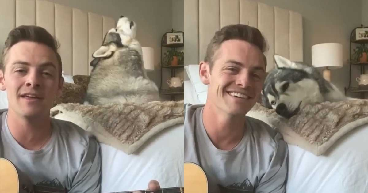 """5 69.jpg?resize=412,232 - Husky Sings """"Lean On Me"""" With Human To Cheer People Up Amid Pandemic"""