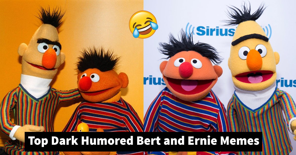 bert and ernie memes.jpg?resize=1200,630 - Dark Humored Bert and Ernie Memes Sure To Make You Smile